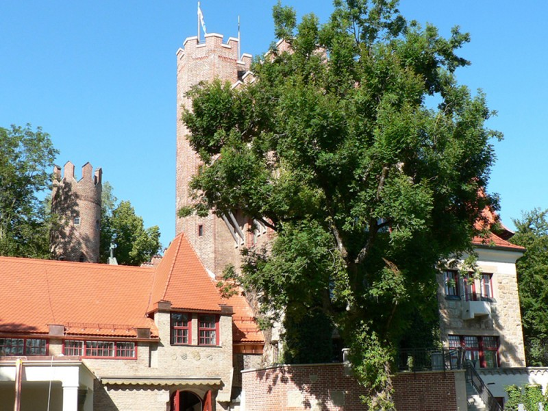 GLS, Munich Castle (14 – 17 лет)