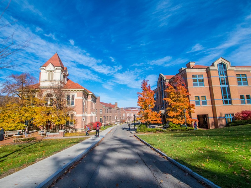 Alfred University (Academic)