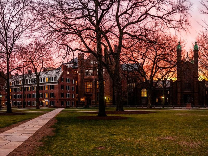 Ardmore, Yale University (13 – 19 лет)